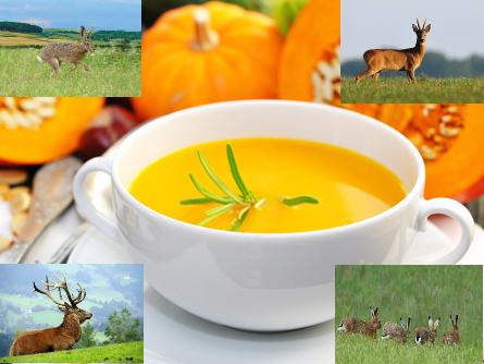 Wild mit Suppe